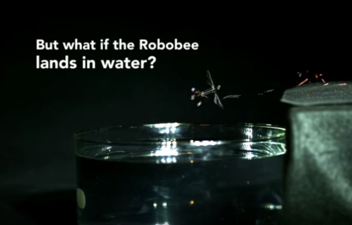 latest tech RoboBee- techcresendo