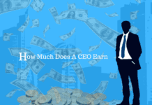 How Much Does A CEO Earn (Knowledge Area)